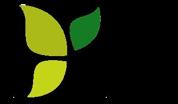 Logo-Falou (2)